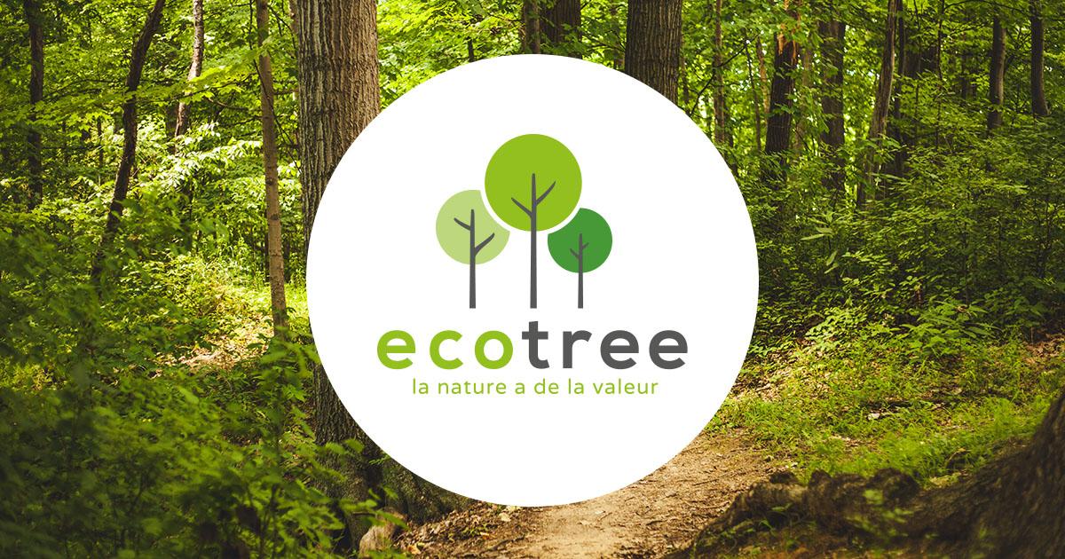 Planter des arbres : la réponse écologique de Sofiouest pour réduire l'empreinte carbone de ses participations